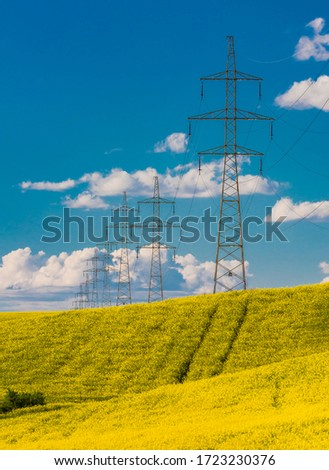 Rape field with high voltage electric towers #1723230376