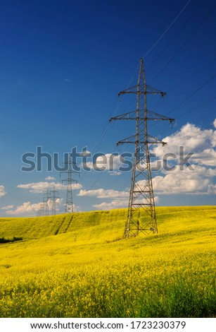 Rape field with high voltage electric towers #1723230379