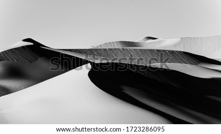 black and white Sand Dunes In Liwa desert abu dhabi , united arab emirates Royalty-Free Stock Photo #1723286095