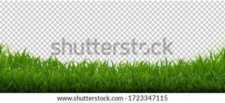 Green Grass Frame Transparent Background With Gradient Mesh, Vector Illustration