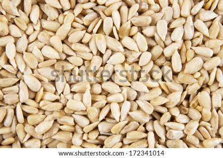 Sunflower seeds background #172341014
