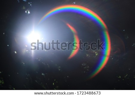 Natural lens ring rainbow flare at the forest