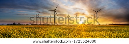 Wind power plants on yellow rape field at sunset Royalty-Free Stock Photo #1723524880