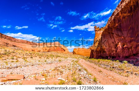 Red rock canyon road landscape. Road in red rock canyon desert. Red rock canyon trail view. Red rock canyon desert scene #1723802866