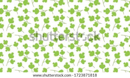 Coriander vector. Coriander pattern wallpaper. Coriander on white background. #1723871818