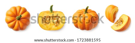 Set of fresh whole and sliced pumpkin isolated on white background. Top view #1723881595