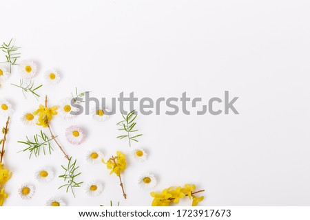 Spring frame of small flowers and daisy, floral arrangement #1723917673