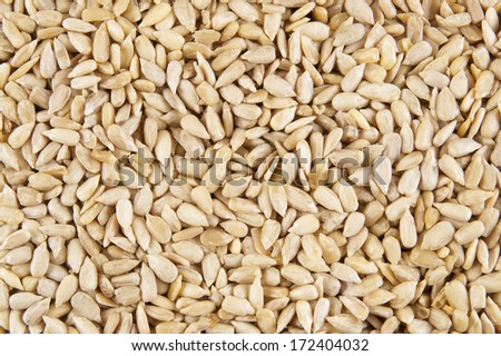 Sunflower seeds background #172404032