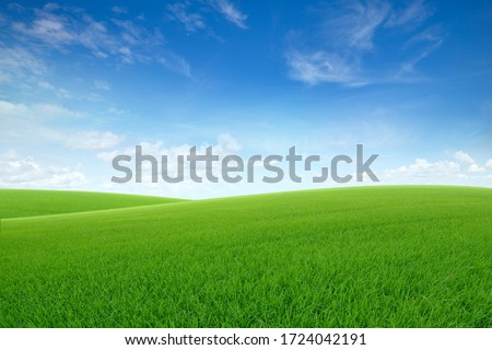 Landscape view of green grass on slope with blue sky and clouds background. #1724042191