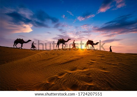 Indian cameleers (camel driver) bedouin with camel silhouettes in sand dunes of Thar desert on sunset. Caravan in Rajasthan travel tourism background safari adventure. Jaisalmer, Rajasthan, India #1724207551