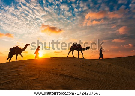 Indian cameleers (camel driver) bedouin with camel silhouettes in sand dunes of Thar desert on sunset. Caravan in Rajasthan travel tourism background safari adventure. Jaisalmer, Rajasthan, India Royalty-Free Stock Photo #1724207563