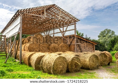 Hay storage with harvested bales of hay for cattle. Agricultural barn canopy with round bales hay in summer #1724218225
