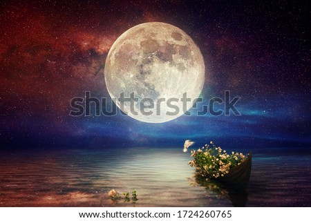 Fantasy starry night sea after sunset, boat full of flowers, pigeon flying, blue red cloudy sky on water wave reflection on horizon skyline nature landscape concept artistic design raster illustration #1724260765