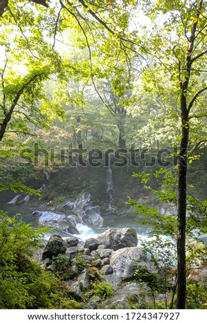 Warm light filtering among maple trees at Kanmangafuchi abyss, next to Daiya river. Abyss formed by eruption of Mount Nantai. Beginning of autumn, October. Off the beaten path, Nikko, Japan, Asia