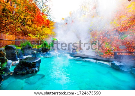 Japanese Hot Springs Onsen Natural Bath Surrounded by red-yellow leaves. In fall leaves fall in Yamagata. Japan. #1724673550