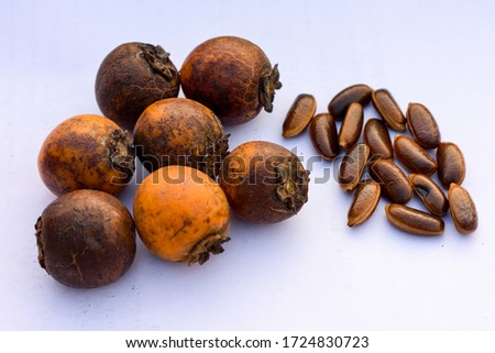 Tendu (Diospyros melanoxylon), also known as the Coromandel ebony or East Indian ebony and Temburini. these fruits are very delicious and nutritious.