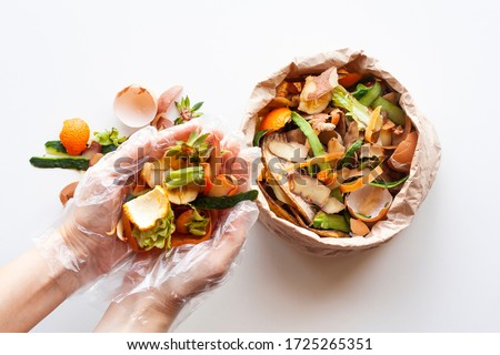 Organic food waste in paper bag and in hands on white background top view. Vegetable peelings and food leftovers ready to compost. Environmentally responsible behavior, recycling waste concept. Royalty-Free Stock Photo #1725265351