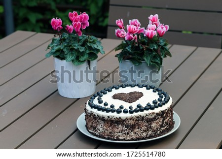Fresh and delicious homemade summertime theme black currant, chocolate and cream cake. Topped with whipped cream, fresh berries and grated chocolate. Cheerful cake for celebrations like bday.