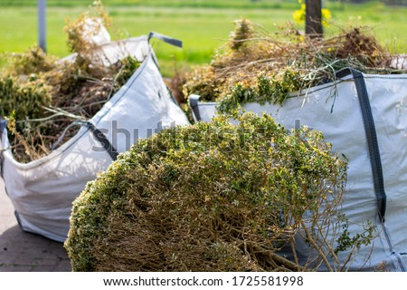 Big white bags filled with organic green garden waste after gardening. Local councils collecting green waste to process it into green energy and compost.  Royalty-Free Stock Photo #1725581998