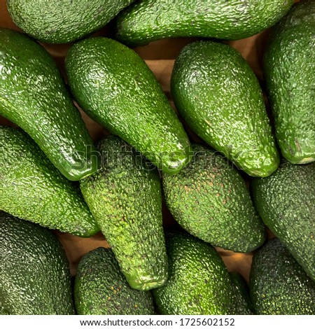 Macro photo food green avocados. Stock photo background green product vegetable avocado #1725602152