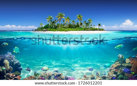 Tropical Island And Coral Reef - Split View With Waterline Royalty-Free Stock Photo #1726012201