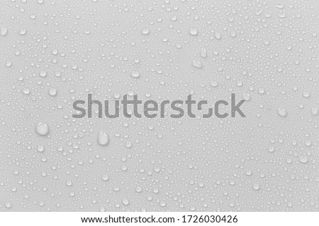 The concept of raindrops falling on a gray background Abstract wet white surface with bubbles on the surface Realistic pure water droplet water drops for creative banner design #1726030426