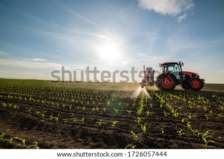 Tractor spraying young corn with pesticides Royalty-Free Stock Photo #1726057444