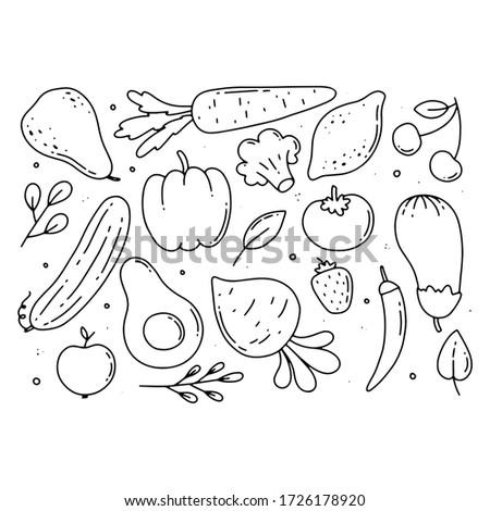 veggie outline - Hand drawn digital illustration of a simple set of various vegetables.