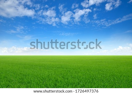 Green meadows with blue sky and clouds background. #1726497376