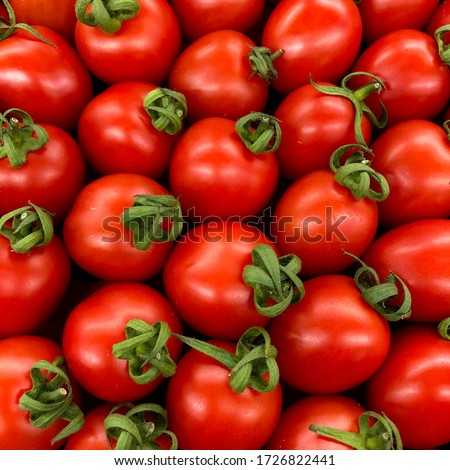 Macro Photo food vegetable tomato cherry. Texture background cherry tomatoes. Stock photo Cherry tomatoes are small juicy and red. #1726822441