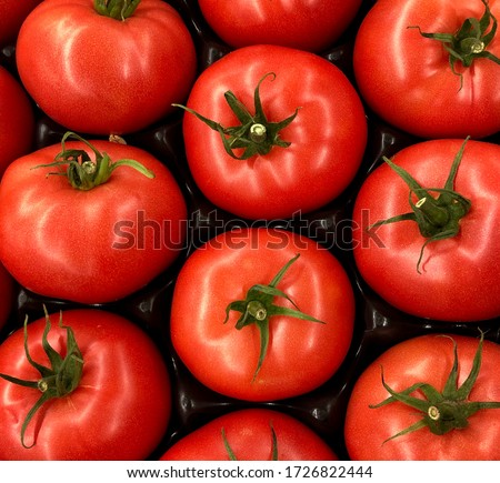 Macro Photo food vegetable tomato cherry. Texture background cherry tomatoes. Stock photo Cherry tomatoes are small juicy and red.