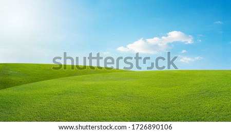 field on a background of the blue sky Royalty-Free Stock Photo #1726890106