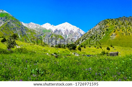 Mountain green valley peak snow. Green mountain valley snow peak background. Mountain peak snow landscape #1726971595