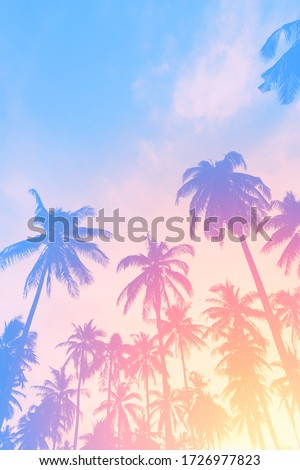 Copy space of silhouette tropical palm tree with sun light on sunset sky and cloud abstract background. Summer vacation and nature travel adventure concept. Pastel tone filter effect color style. Royalty-Free Stock Photo #1726977823