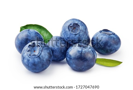 Fresh blueberries with bluberry leaves isolated on white background. #1727047690