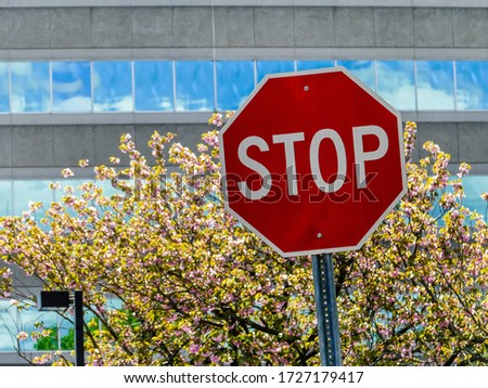 Stop sign with blooming tree and buildg with sky reflections in windows #1727179417
