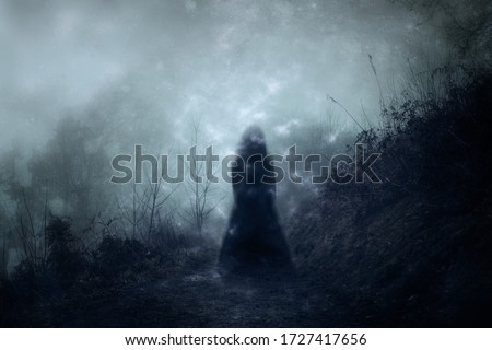 A ghostly blurred woman in a dress standing floating on a country path. With a grunge, vintage textured edit.                 #1727417656