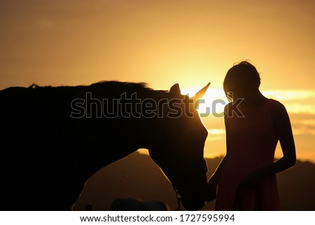 Launceston, UK - October 8th 2016: sunset silhouette of a girl in a pink dress and a horse. #1727595994