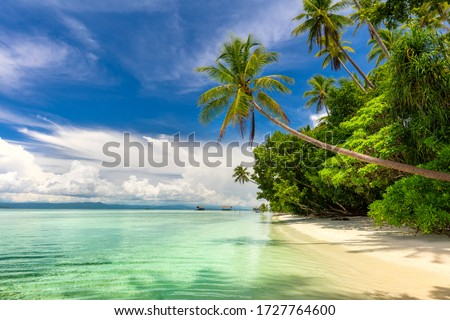 Paradise landscape of tropical beach - calm ocean waves, palm trees, blue sky with white clouds and nobody Royalty-Free Stock Photo #1727764600