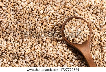 Raw organic pearl barley in wooden spoon - Hordeum vulgare #1727770894