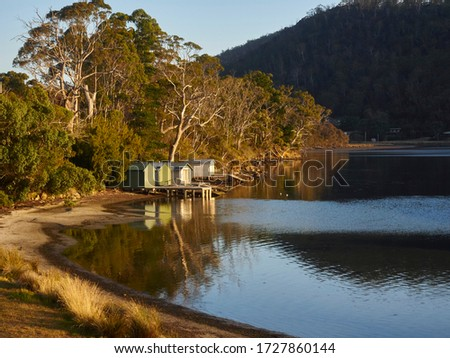 Nubeena  Tasman Peninsula sun hitting the boat sheds on the bay.  Golden colours of the trees behind all reflecting on the sea water      #1727860144