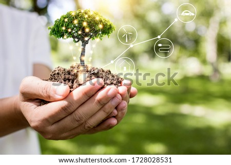 save world and innovation concept, girl holding small plant or tree sapling are growing up from soil on palm with connection line, ecology and conservation concept Royalty-Free Stock Photo #1728028531