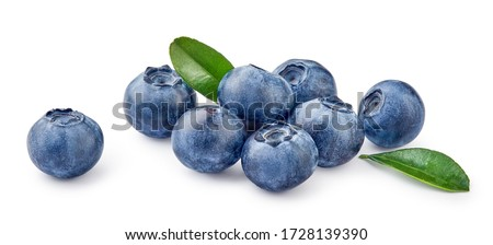 Fresh blueberries with bluberry leaves isolated on white background. #1728139390
