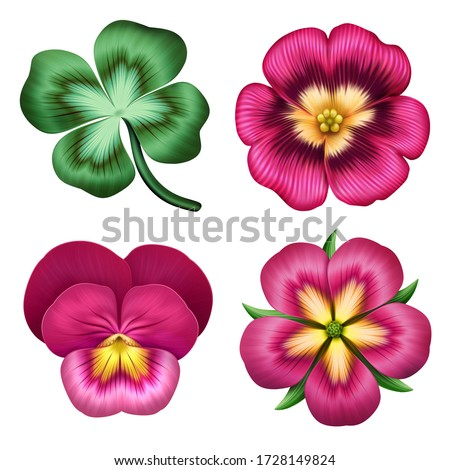 digital botanical illustration, assorted red pink flowers collection, nature design elements. Set of floral clip art isolated on white background