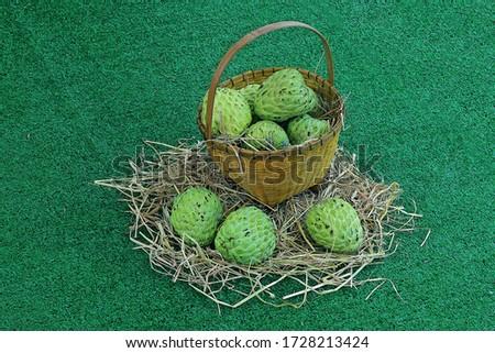 Thai local green custard apples on basket hay #1728213424