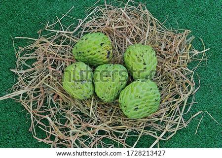 Thai local green custard apples on basket hay #1728213427