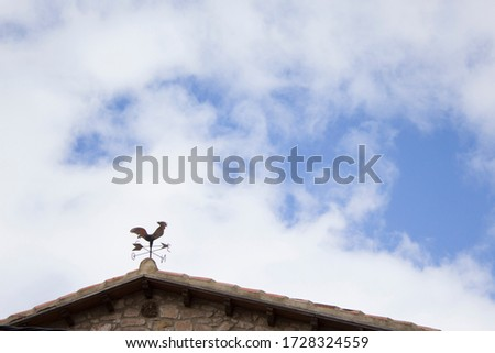 Weathercock on roof and blue sky #1728324559