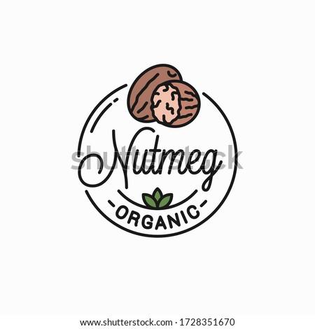 Nutmeg nut logo. Round linear logo of nutmeg on white background Royalty-Free Stock Photo #1728351670