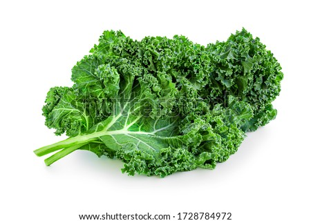 Kale leaf salad vegetable isolated  on white background. Creative layout made of kale closeup. Flat lay. Food concept. #1728784972