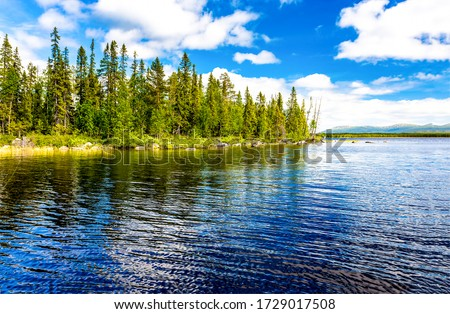 Forest lake trees landscape view. Lake view in summer #1729017508